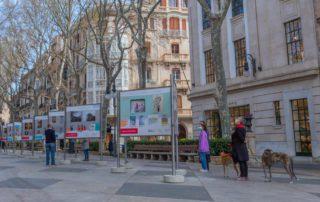 exposición mallorca a casa de Mallorca Global